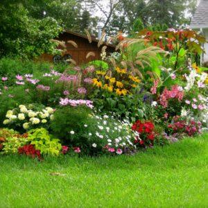 Цветочная клумба – лучшее украшение участка
