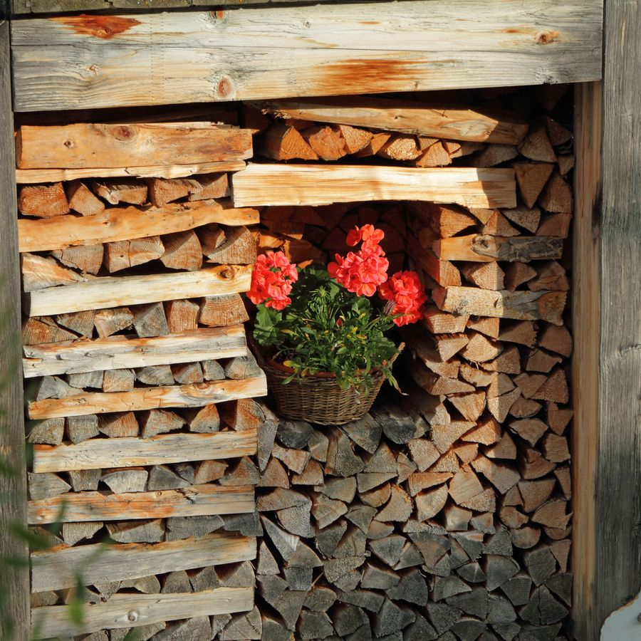 corner with firewood decorated with flowering plant, village in Dolomiti mountains, Italy