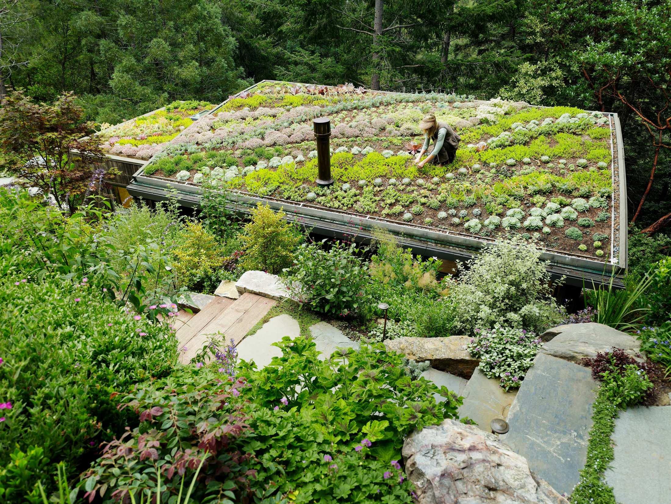 house-rooftop-garden-08