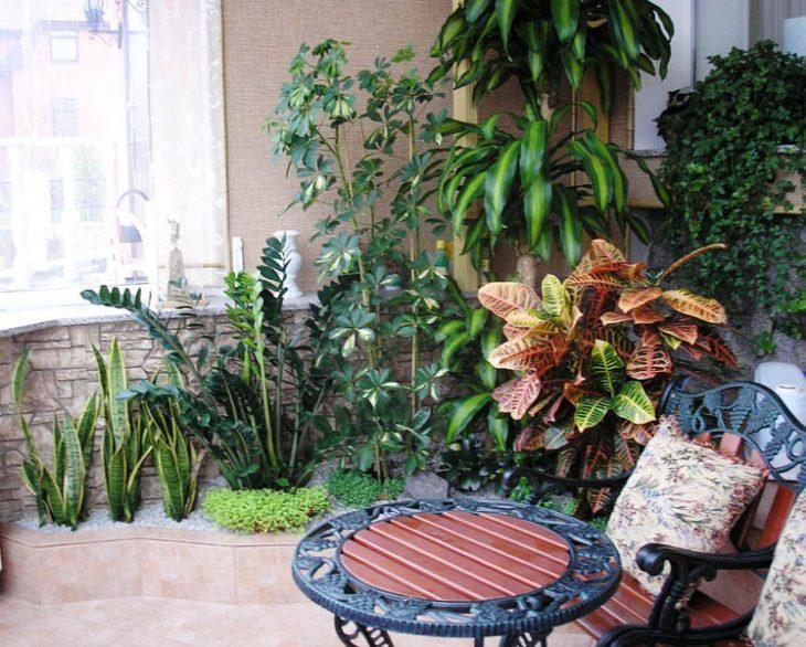 Зимний сад в квартире - 35 фото идей