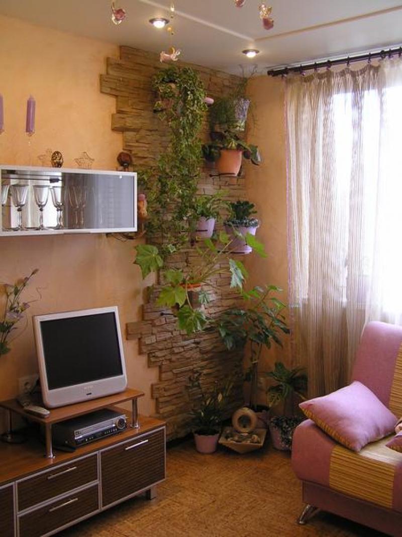 Расстановка цветов в квартире