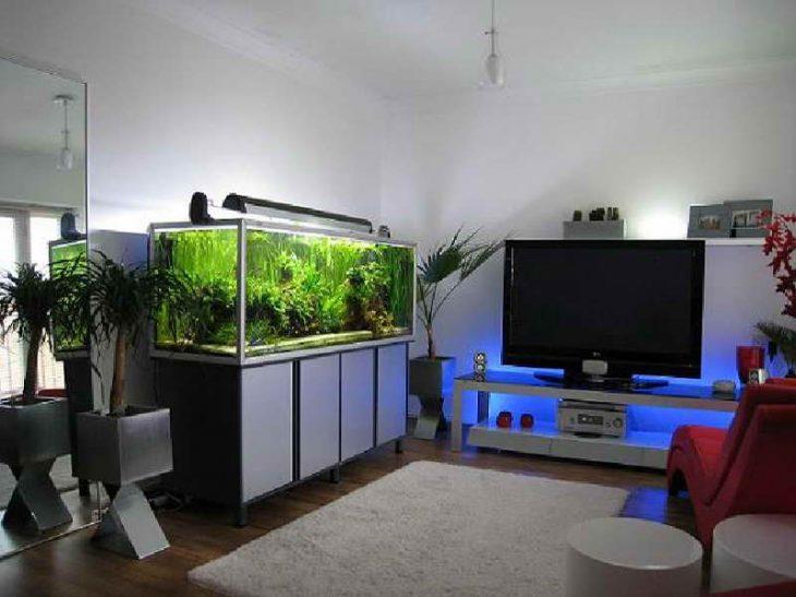 большие аквариумы в интерьере