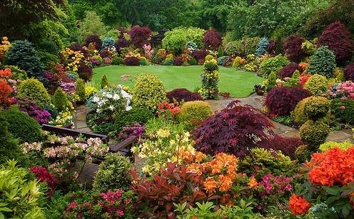 Терпение и труд сад и огород на даче создадут