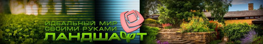 MirLandshaft.ru - лучший информационный портал по ландшафтном дизайне. Современные идеи оформления двора с фото и описанием.