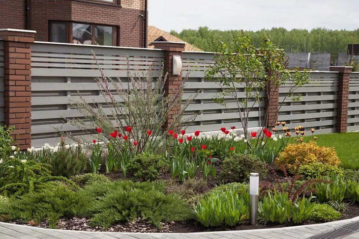 какие растения посадить в палисаднике