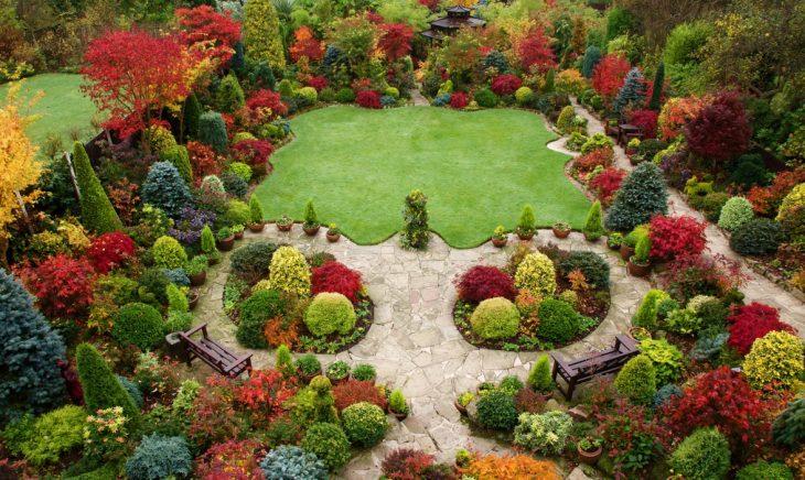 сады голландского стиля
