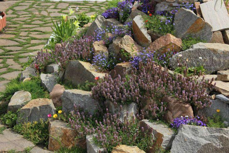 Виды альпийских горок. Каменная стенка