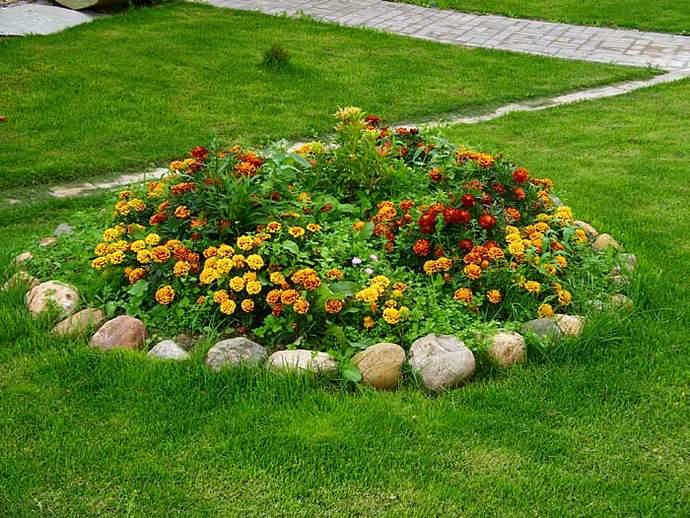 красивый цветник на даче фото