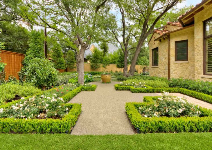 Живая изгородь на даче 80 фото современных решений