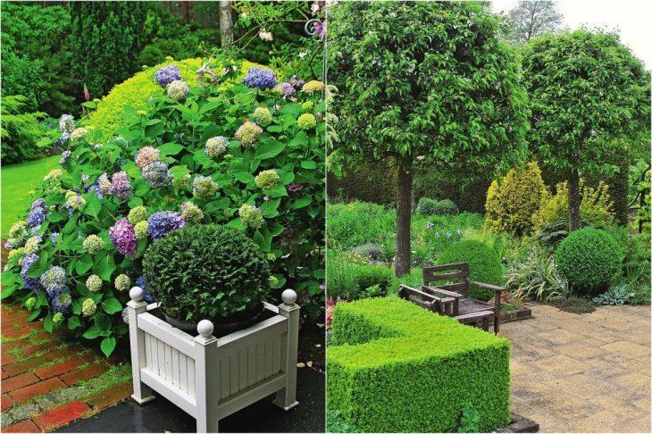 дизайн обустройства садового участка