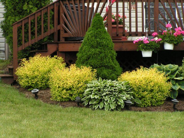 Ландшафтный дизайн садового участка - 70 фото как оформить