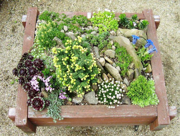 дизайн проект садового участка