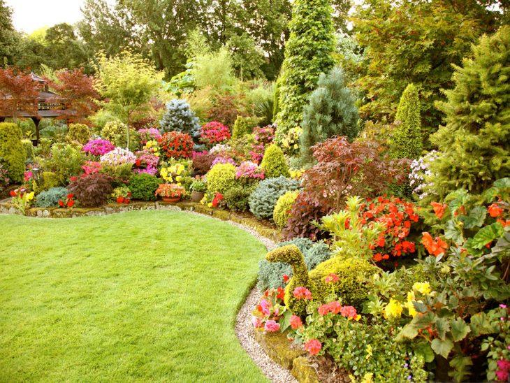 ланш дизайн садового участка