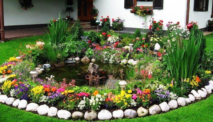 цветочные клумбы на участке