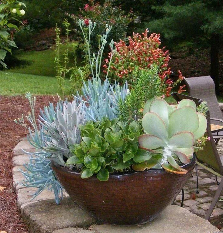 горшок для растений керамический