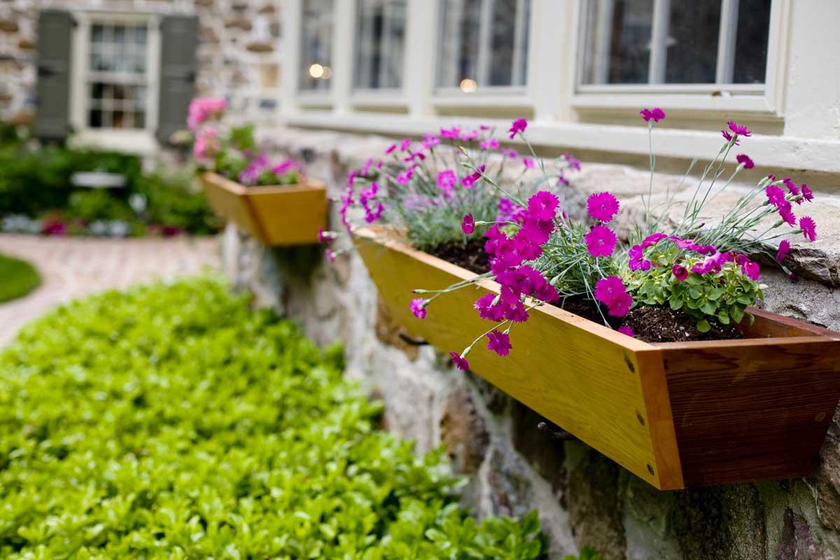 как украсить балкон цветами в горшках