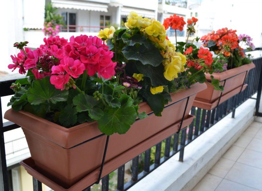 горшки для балкона