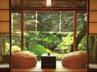 Как озеленить частный дом — пошаговая инструкция (55 фото)