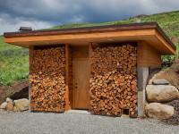 Какие дрова лучше и как правильно их хранить? Особенности при выборе дров на зиму