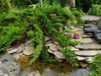 Красивый ландшафтный дизайн 10 соток фото 45 идей