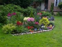 Ландшафтный дизайн: виды и функции живых изгородей
