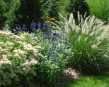 Про экономный полив сада