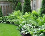Экономный полив сада