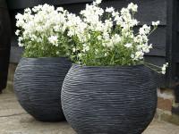 Горшок для цветов керамический большой. 105 фото красивых керамических горшков для цветов