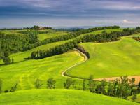 Как выбрать идеальный земельный участок для строительства усадебного дома или дачи