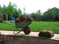Красивый газон своими руками. Как выбрать семена для газона.