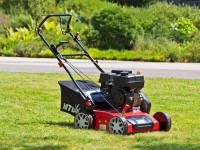Техника для сада и огорода: как выбрать газонокосилку?