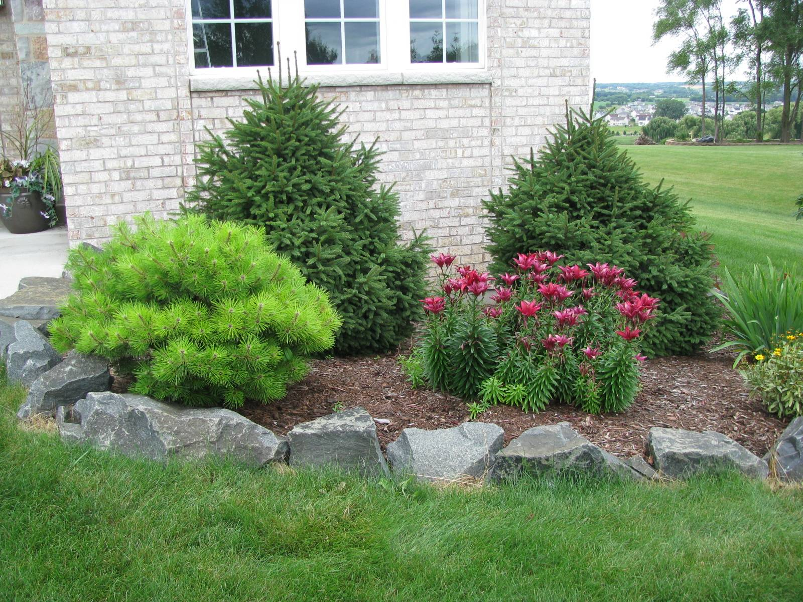 exterior-modern-landscaping-ideas-for-front-house-with-pine-trees-and-red-flower-also-natural-stone-with-front-yard-landscape-design-ideas-plus-front-yard-landscaping-awesome-exterior-fo