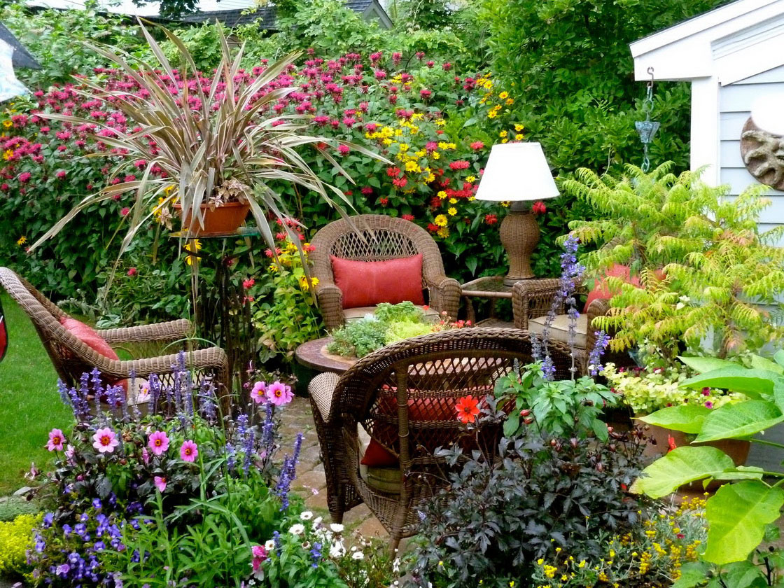 landscaping-ideas-for-your-house-rose-in-bloom