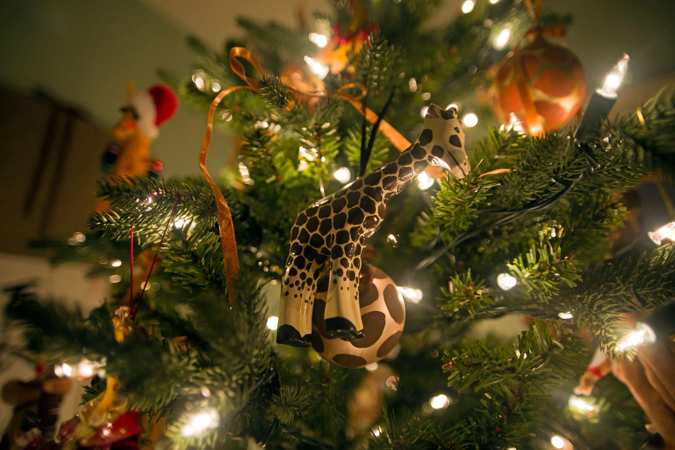christmas_decorate_02