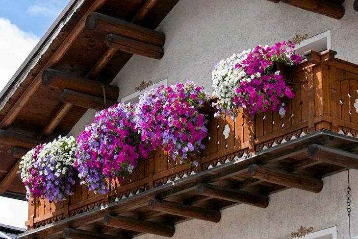 балконные композиции из цветов