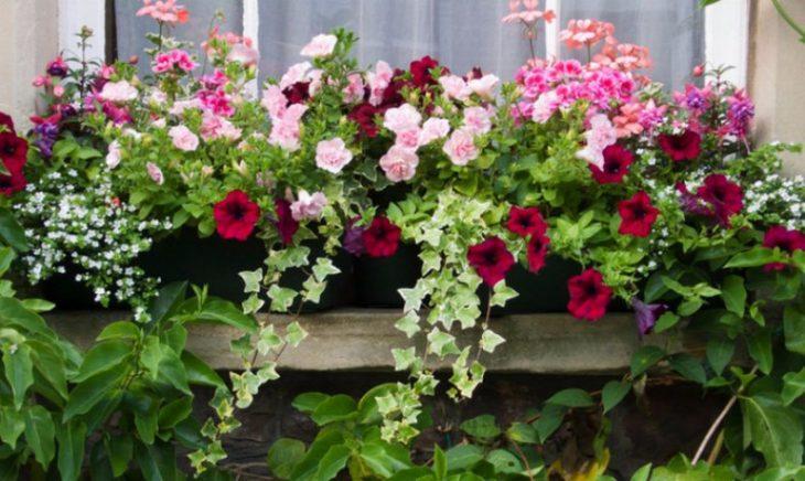 подставка под цветы балконная