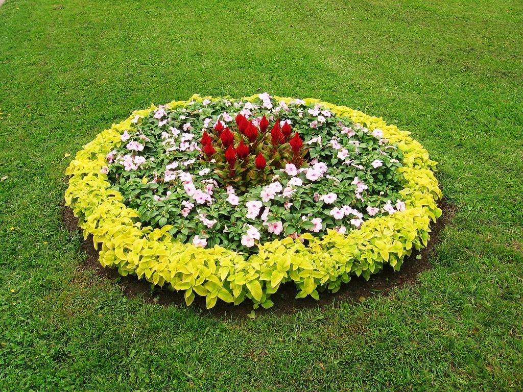 фото дизайна цветочной клумбы