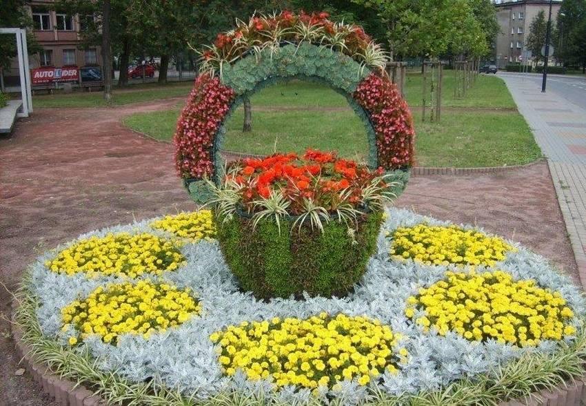 цветы клумбы дизайн фото