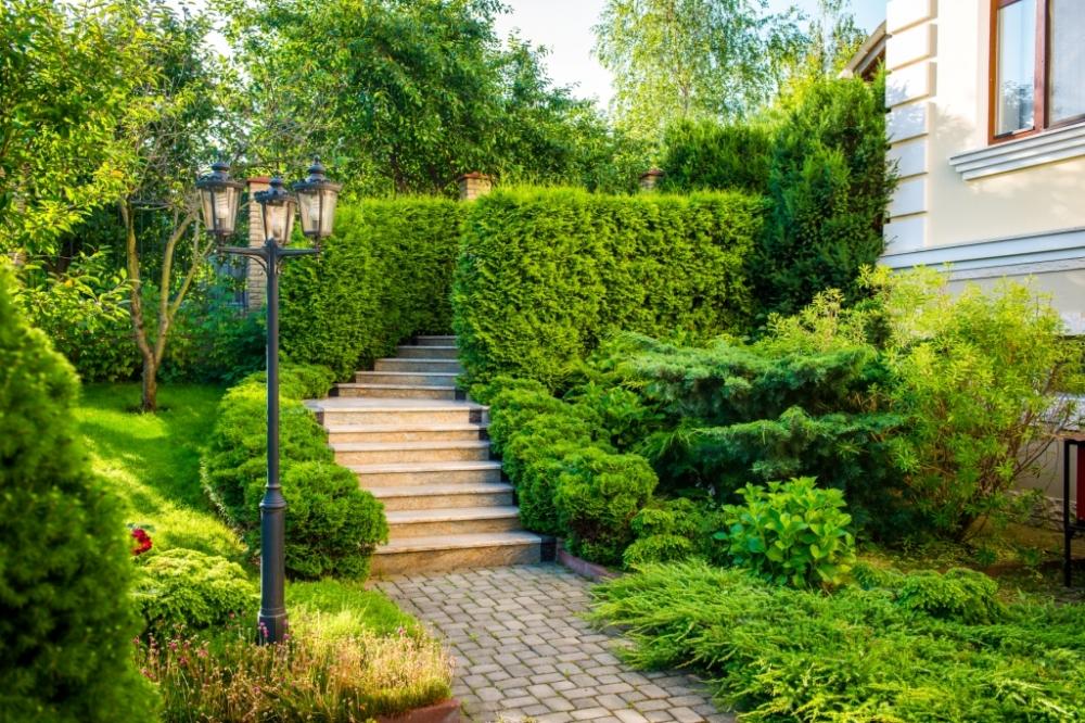 садовые деревянные лестницы